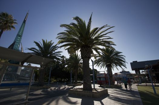 Perth-Rottnest1.jpg