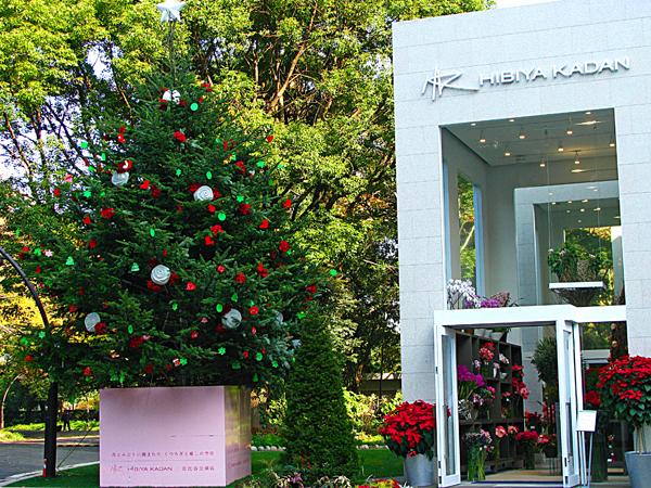日比谷花壇のクリスマスツリー