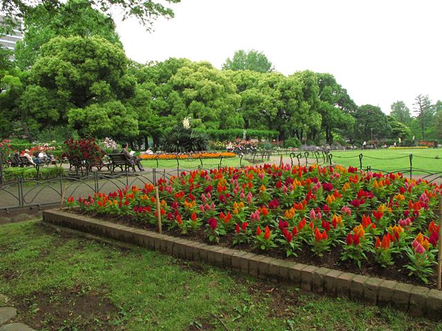 花壇☆日比谷公園