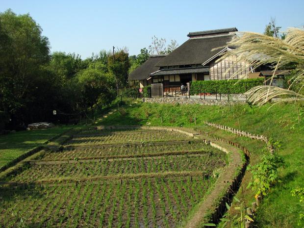 赤羽自然観察公園☆旧松澤家住宅