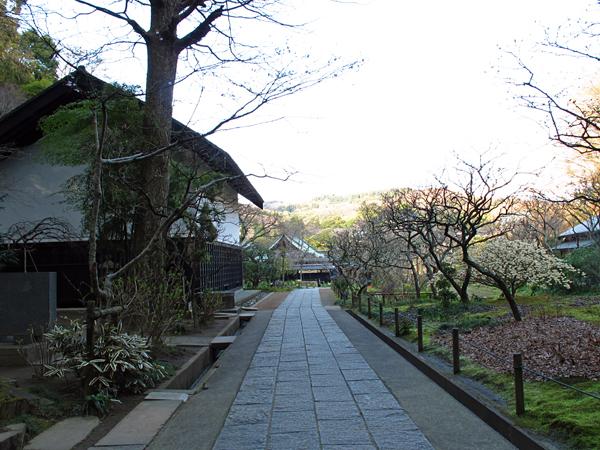 東慶寺☆鎌倉