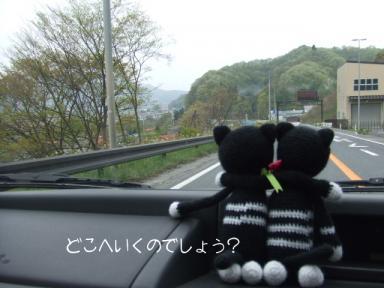 どこへ行くのでしょう?
