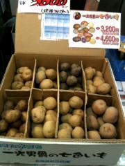 北海道のジャガイモ8種