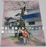 P4250007.jpg