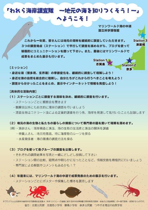 海岸調査.JPG