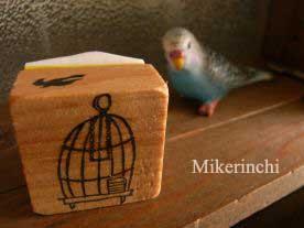 鳥カゴ.jpg