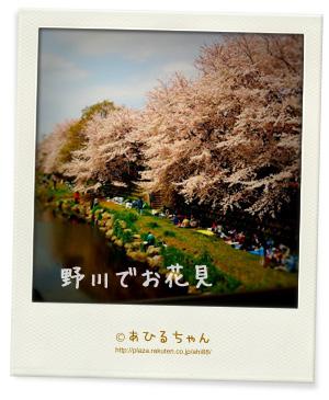 20110411_03.jpg