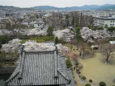 005-松本城.jpg