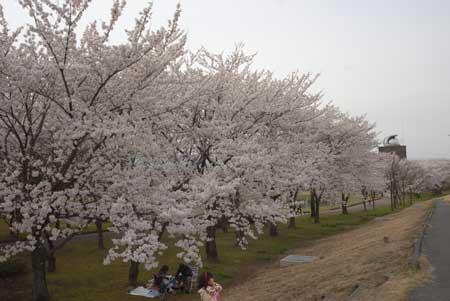 401_川中島.jpg