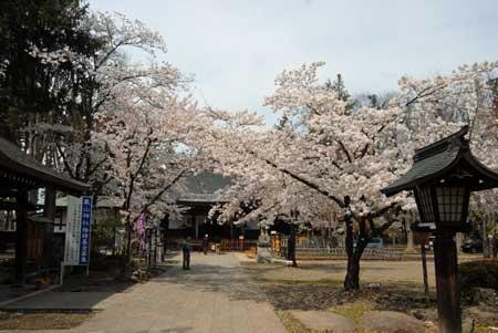 310_象山神社.jpg