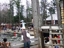 2010GW-戸隠忍者村4