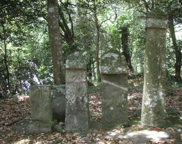 佐田神社境内内 県指定文化財 (右端・右より3番目)