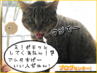 IMG_0656.jpg