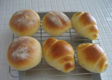 ホシノ天然酵母でおしりパンとロールパン