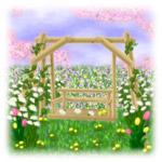 spring-nohara