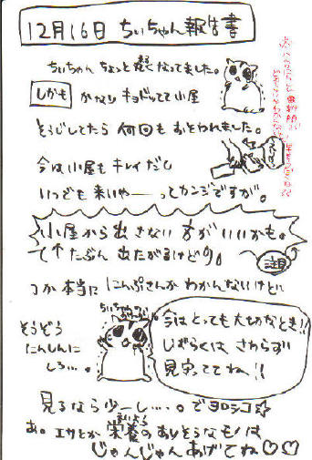 ちぃ報告書1