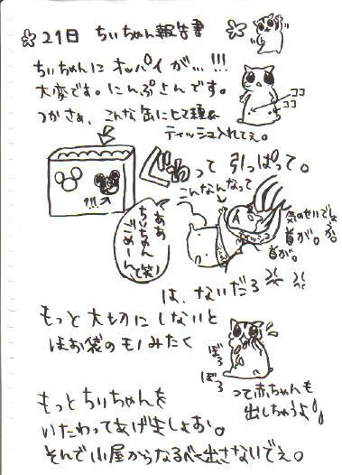 ちぃ報告書4