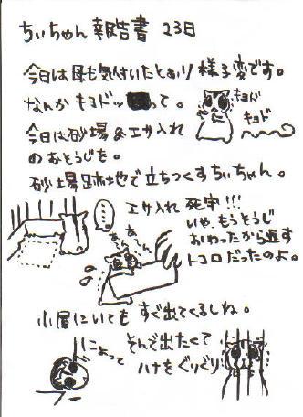 ちぃ報告書6