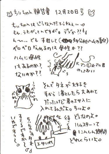 ちぃ報告書3