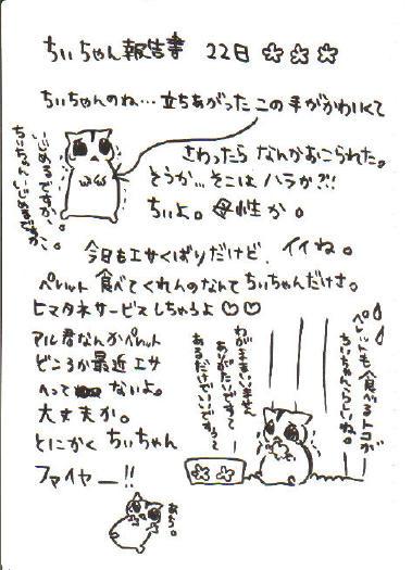 ちぃ報告書5
