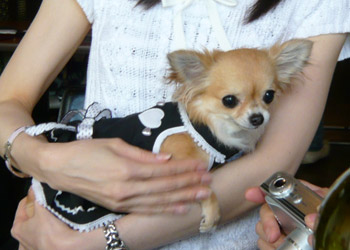 Karynn_Sono.jpg