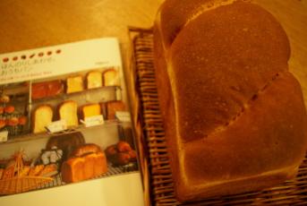 かぼちゃ小1.jpg
