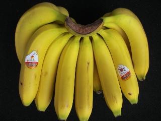 バナナ0528