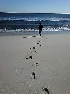 砂浜だって誰もいない。