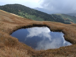 巻機山の池塘