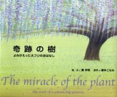 絵本「奇跡の樹」