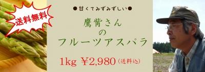s-201006110.jpg