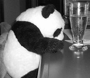 パンダも飲むよ
