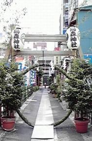H22夏越大祓茅の輪(参道)1