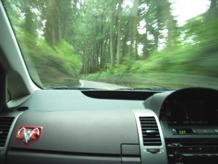 朝の爽快ドライビング