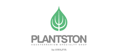 AQUATERRARIUM PLANTSTON