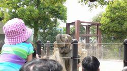 上野動物園3.JPG