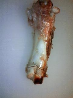 豚骨 豚の骨は愛犬のおやつとして最高だよ! カルシウム等栄養源だけでなく歯磨き効果も | 愛犬問