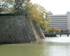 福井城址北西隅、天守台のある所