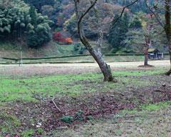 義景館跡北側の柳の馬場