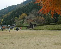 義景館跡前の犬の馬場