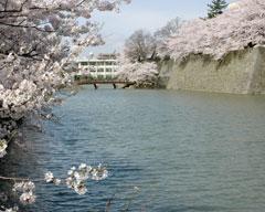 福井城址南西から御廊下橋を撮影