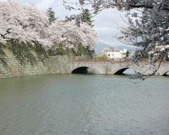 福井城址南西から御本城橋を撮影