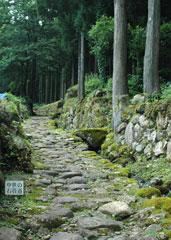 中世の石畳=南谷三千六百坊院跡