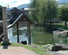 国の天然記念物「イトヨ生息地・本願清水」