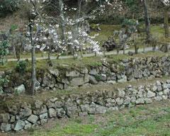湯殿跡庭園横にある空堀の石垣