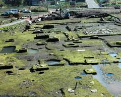 八地谷地区の掘建柱を多様した住居跡