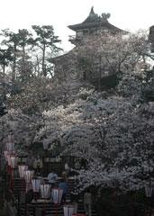 日本最古の丸岡城天守