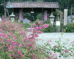 萩の花で有名な福井の瑞源寺