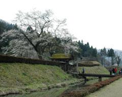 義景館跡の唐門付近