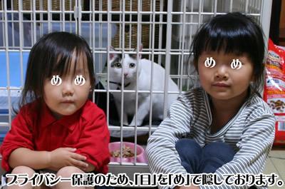 美猫とともに記念撮影